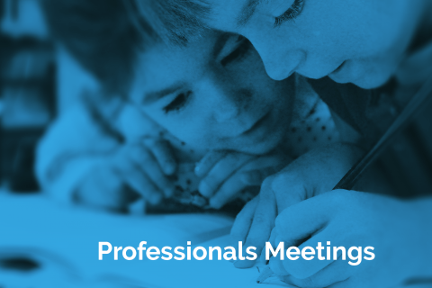 Professionals Meetings Guidance